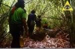 Menembus Hutan Bambu