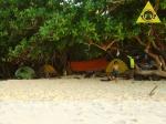 Anak Pantai