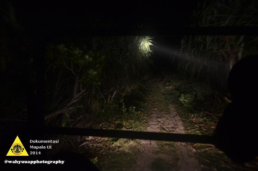 Safari malam untuk mengamati fauna yang ada di savana kawasan TWNC.